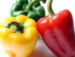 Konkurs kulinarny na najlepsze danie z papryki